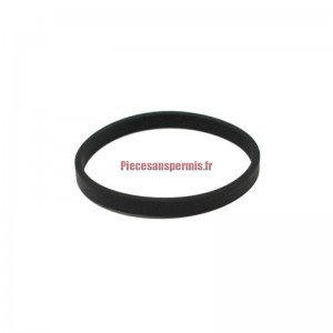 Joint de thermostat Lombardini DCi